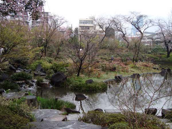 Mohri Garden's Space Medaka