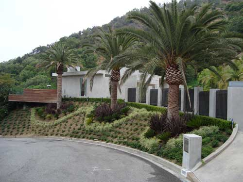 West Hollywood hills garden