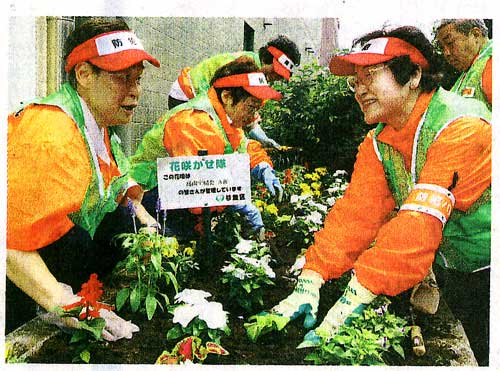 Suginami Operation Flower