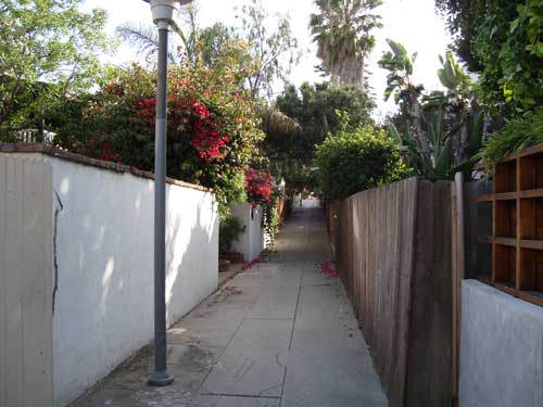 Pedestrian alley in Venice Beach