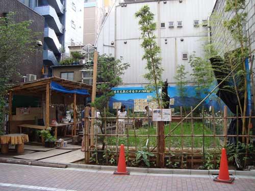 Ginza rice farm