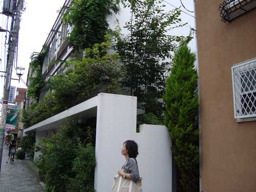 Kakinokizaka Moegi apartment building viewed from sidewalk