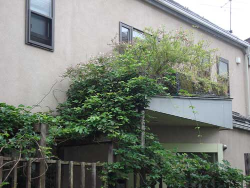 Kami Meguro residence A small roof