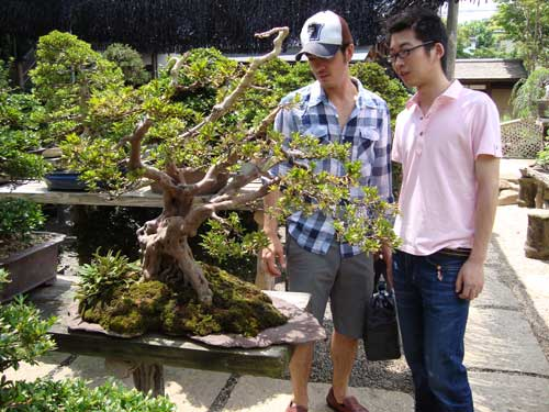 matthew and link at bonsai museum