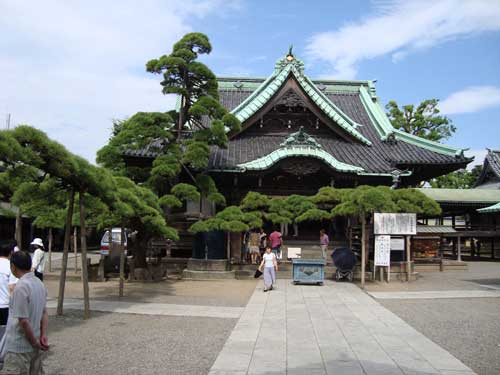 "Shibamata Temple with ""dragon"" tree"