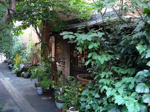 Tsukishima: green alleys