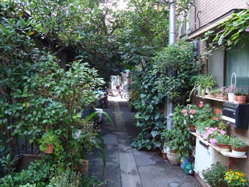 Tsukishima green alley