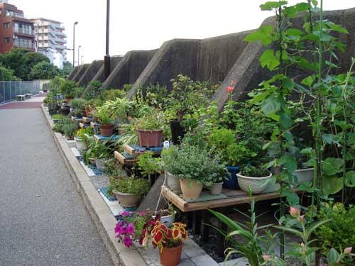 tsukishima_river_garden3