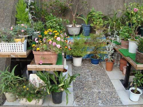 tsukishima_river_garden4