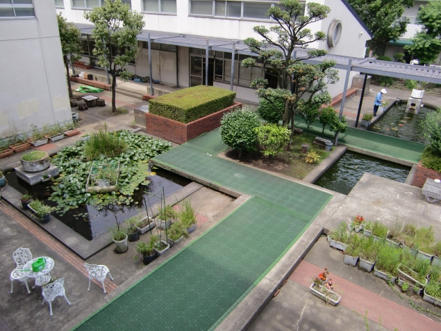 Yokohama junior high school garden, from Goinglocoinyokohama blog
