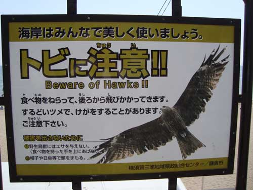 Hawk sign, Kamakura