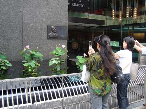 Lotus viewing in Ginza at Mikimoto