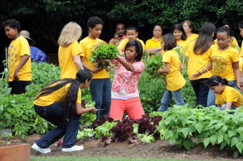 US First Lady Michelle Obama at White House vegetable garden