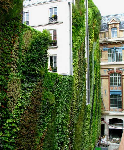 Patrick Blanc's Vertical Gardens