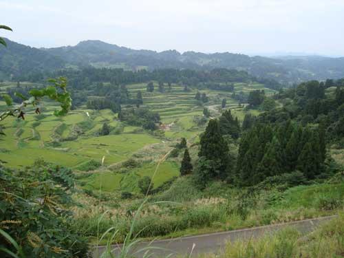 Niigata satoyama