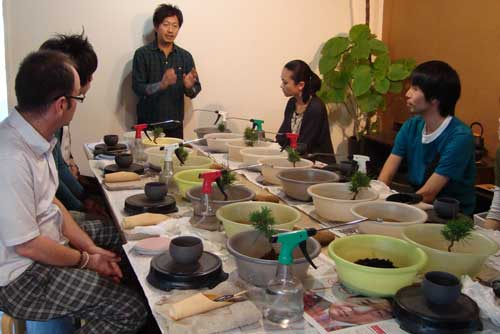 Sinajina class: Preparing plants for New Year's celebration