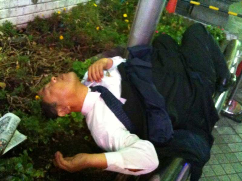 Drunk salary man passed out in flower bed