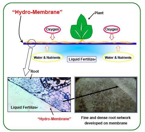 Mebiol's Hymec farm system