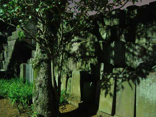 Night view of cemetery