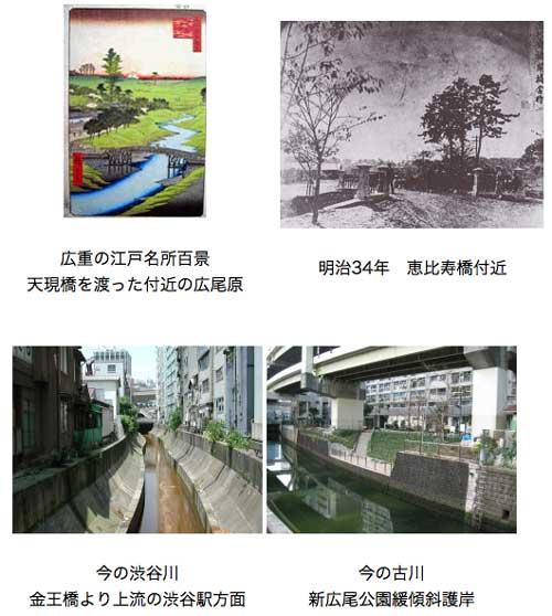 Furukawa river in edo, meiji & now