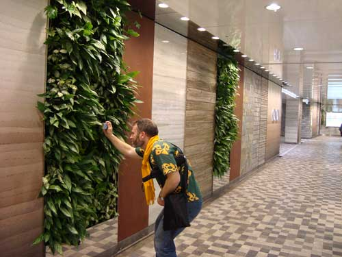 Marui's plant walls in subway passage