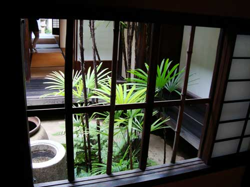 Palm trees in Kurashiki traditional courtyard house