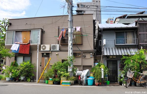 Muza-chan's photos of Tokyo green spaces