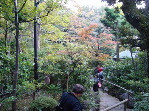 Fall foliage at Nezu Museum