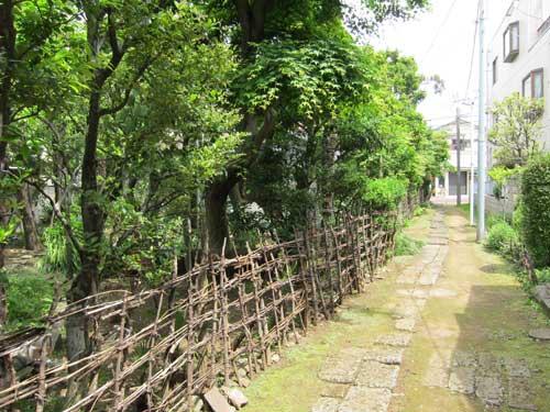 Nakano Walk 005