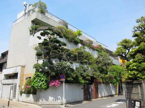 sendaji forest house2 In my Reader...Tokyo DIY Gardening