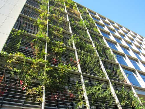 Green Wall Facade : Office tokyo green space page