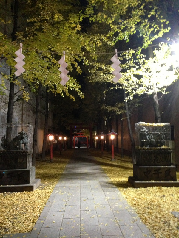 ginkgo_fall_hanazono_shrine_shinjuku_t