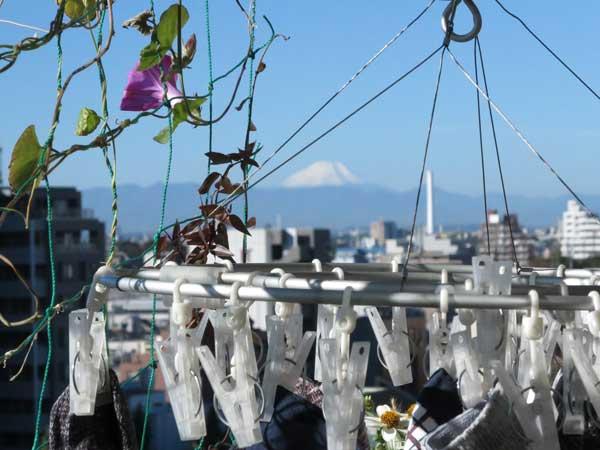 mtfuji_clothespins_nakano_b