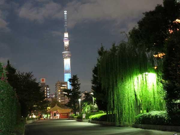 skytree_night_from_asakusa