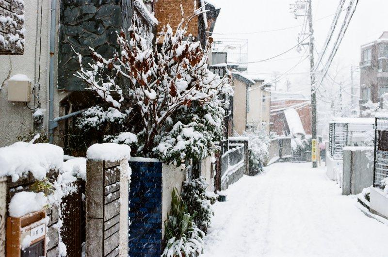 snow_iishi_nakano