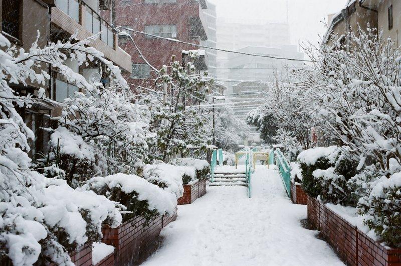 snow_nakano_pedestrian_path