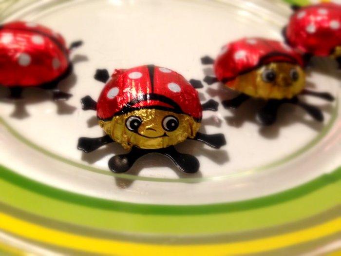 ladybug_chocolate