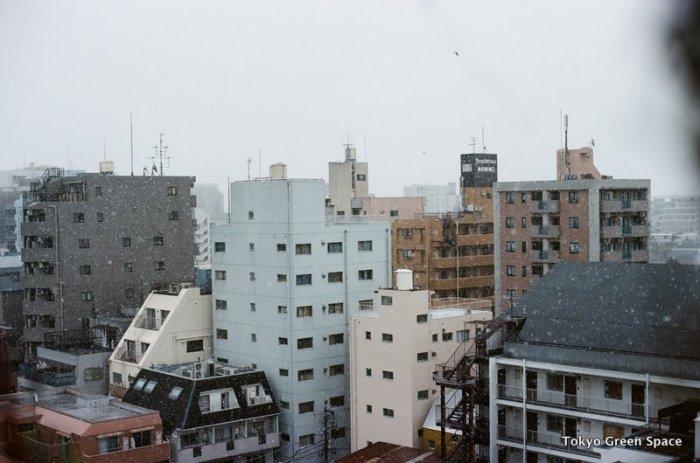 snow_nakano_cityscape