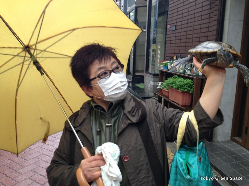 Turtle_Look_Shoutengai_Koenji