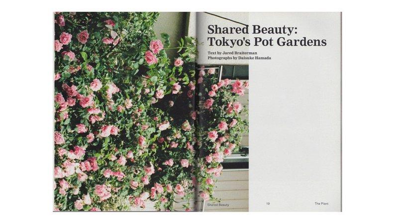 sharedbeauty_theplant_openingspread
