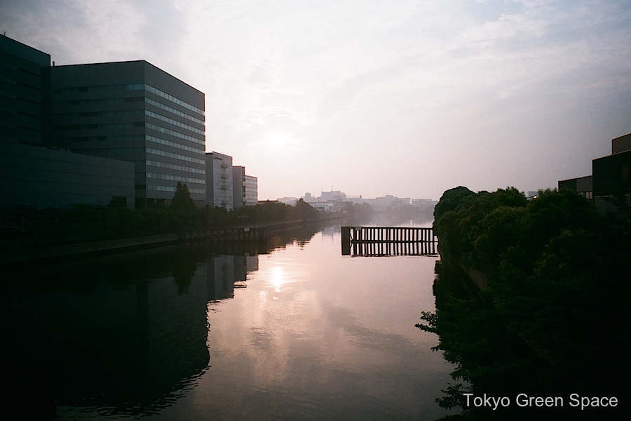 canal_shinkiba_dawn