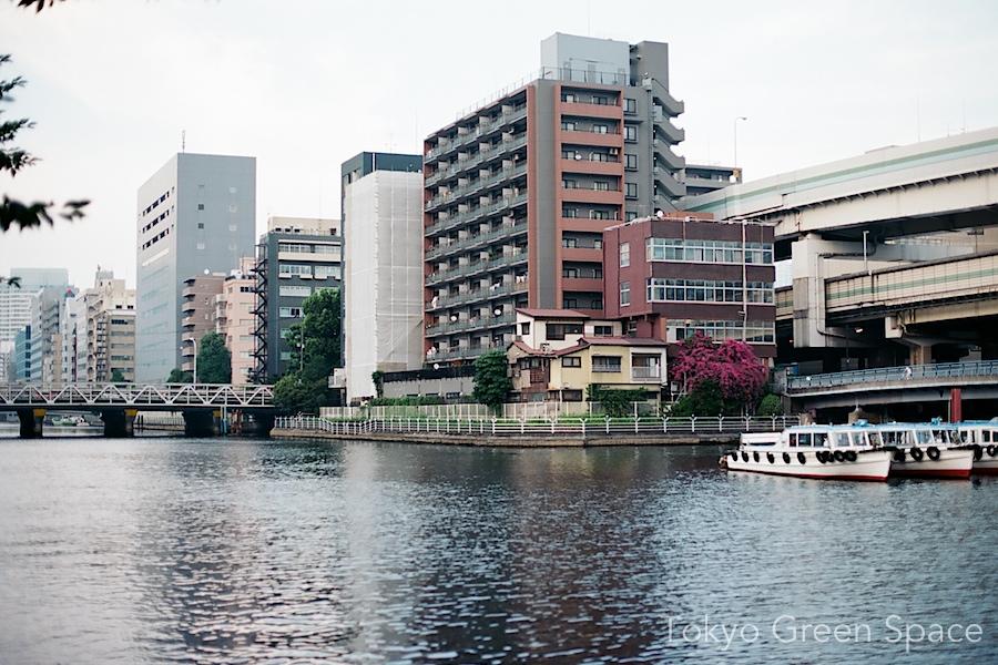 shibaura_ichome_canal_showa_cluster