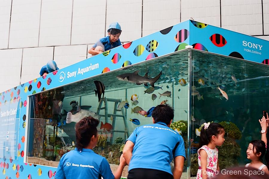 sony_aquarium_ginza