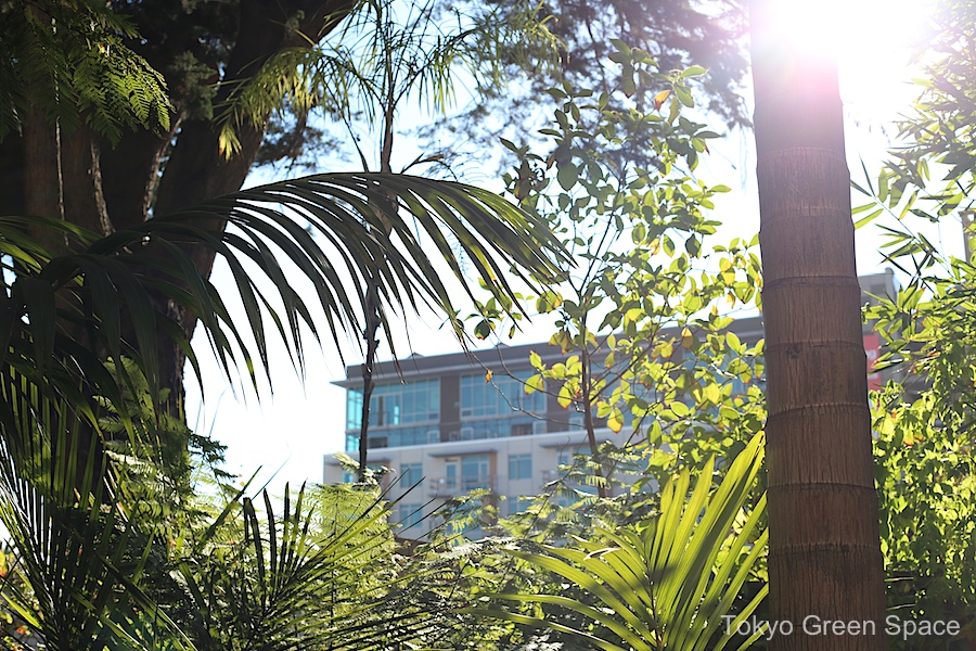 clintonpark_garden_newcondos