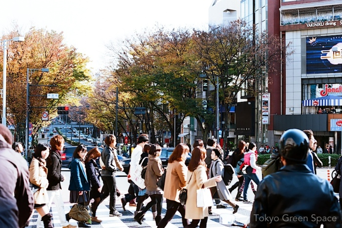 omotesando_fall_leaves_shoppers
