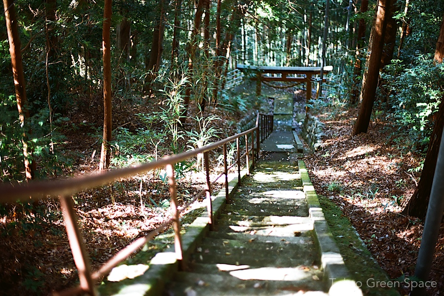 shrine_stairs_izu_fall
