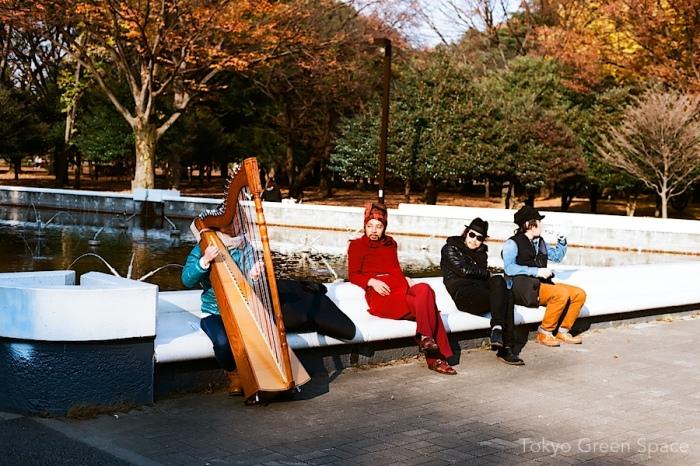 yoyogi_park_harp_fall