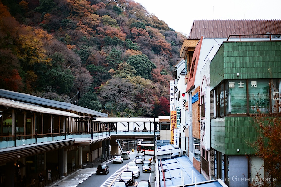 hakone_fall_foliage_station