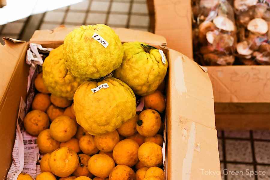 yuzu_inseason_farmersmarket