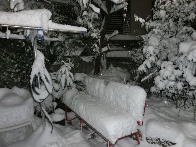 tokyo.snow.feb8.2014